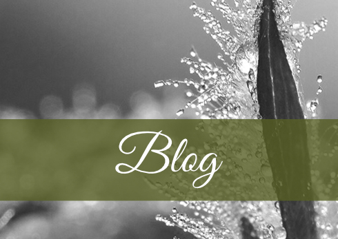 Blog Energy for life